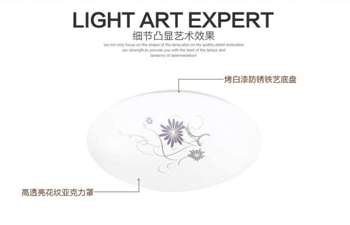 Светодиодные потолочные светильники LED-9003 (101-246) - 11