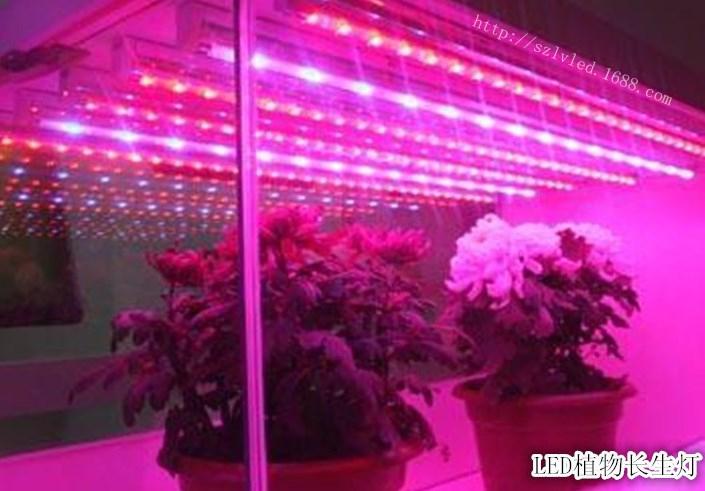 Светодиодная лампа для роста растений LED Lvyingguangdian Т5-T8 (112-115) - 5