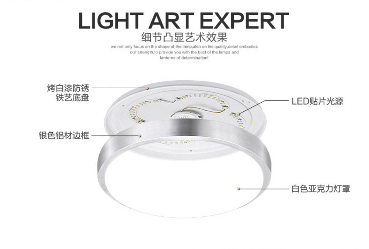 Светодиодные потолочные светильники LED-2321 (101-247) - 11