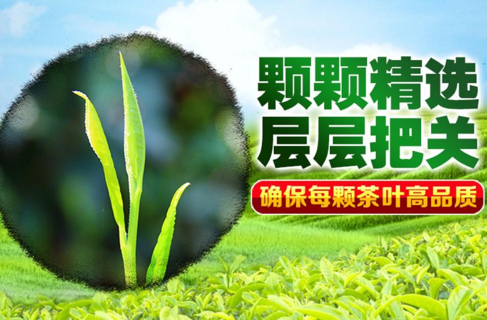 Новый зеленый чай 2016 Qing Cheng Tang (121-102) - 4