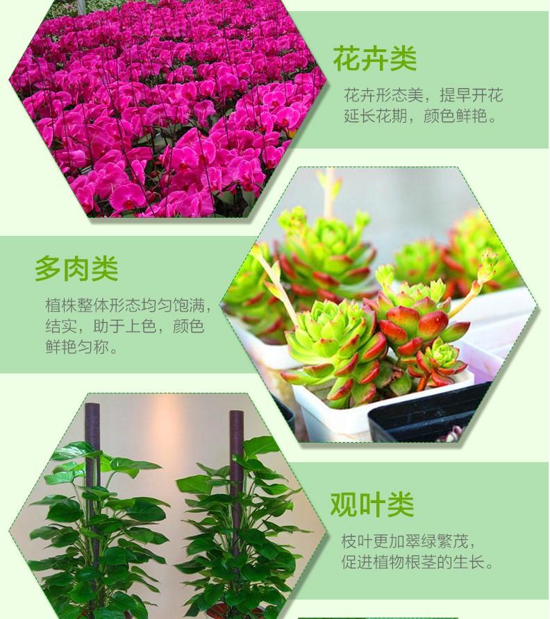 Светодиодная лампа для роста растений WEGA-WAN-T8120-T8-9W-36W (112-102) - 9