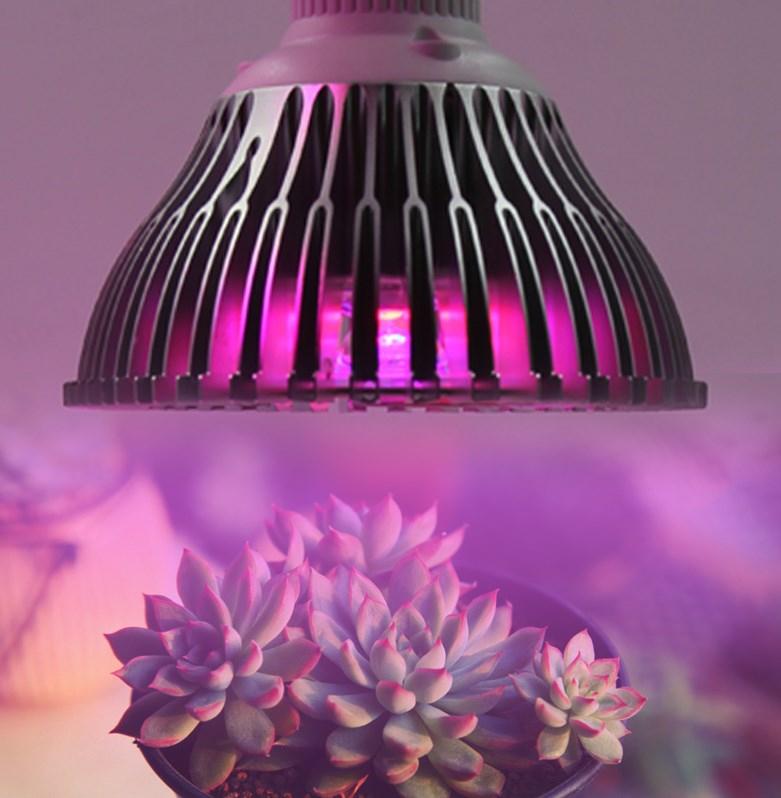 Светодиодная лампа для роста растений WEGA-WAN-P18-E27-5W-18W (112-103) - 10