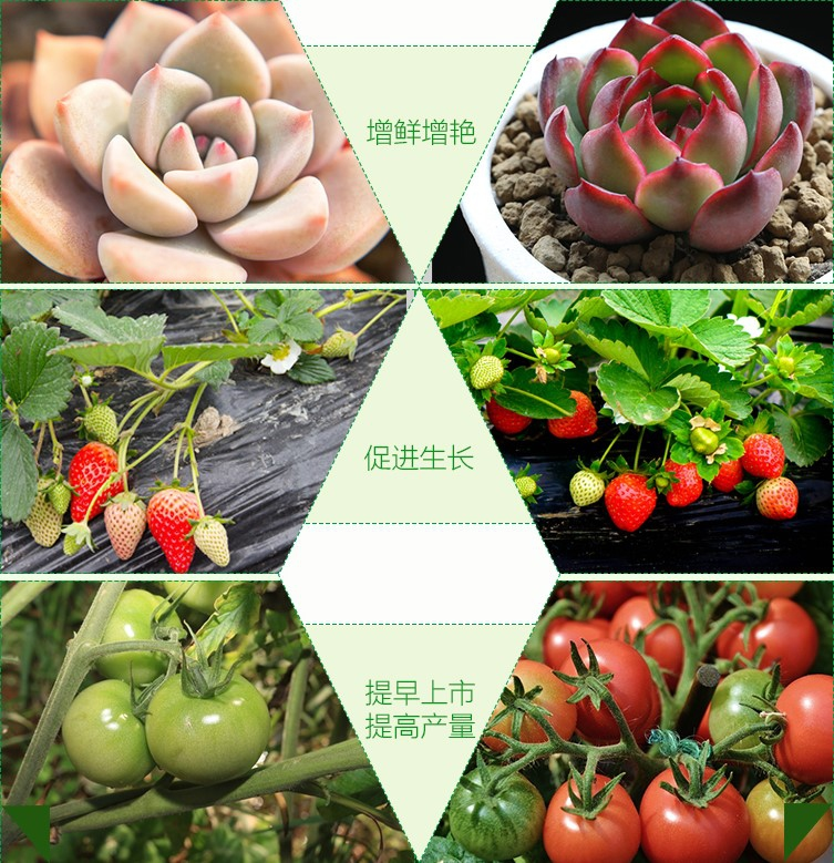 Светодиодная лампа для роста растений WEGA-WAN-T8120-T8-9W-36W (112-102) - 4