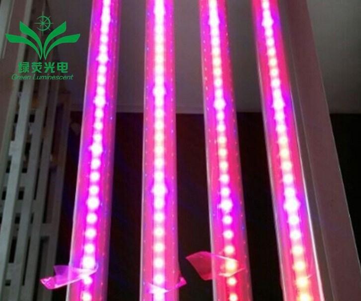 Светодиодная лампа для роста растений LED Lvyingguangdian Т5-T8 (112-115) - 2