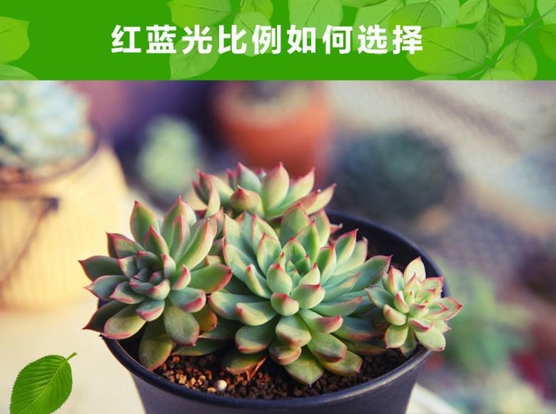 Светодиодная лампа для роста растений WEGA-WAN-P18-E27-5W-18W (112-103) - 6