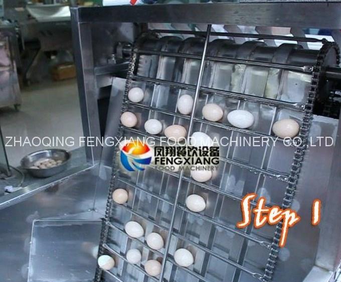 Машина для очистки куриных яиц FT-200 (111-101) - 2