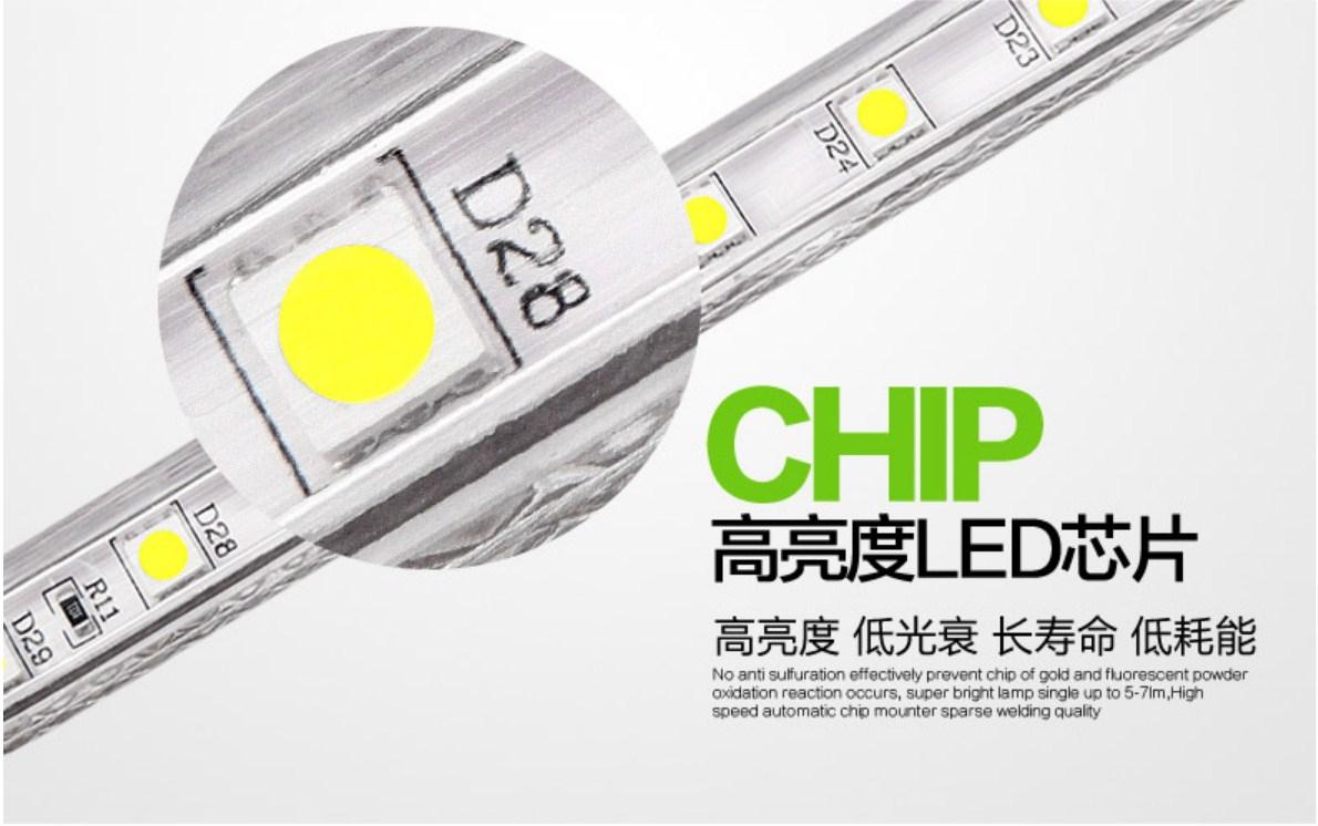 Светодиодная лента Plymouth Dili Lighting LED-SMD-5050 (101-245) - 13