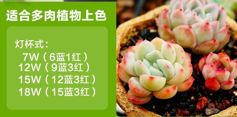Светодиодная лампа для роста растений WEGA-WAN-P18-E27-5W-18W (112-103) - 5