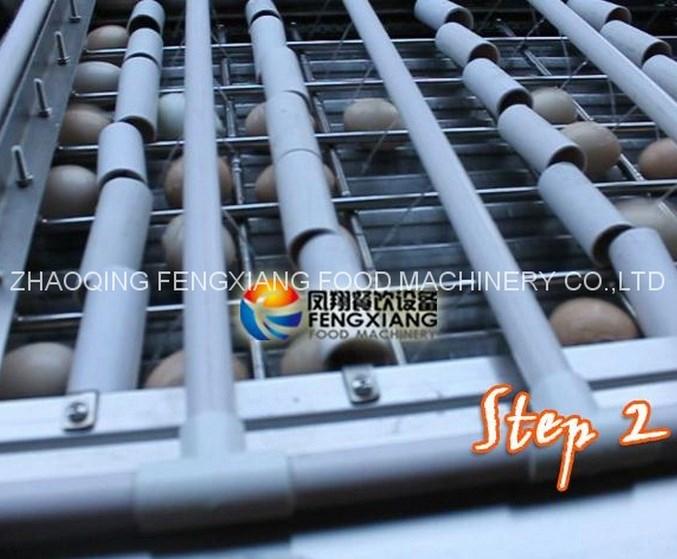 Машина для очистки куриных яиц FT-200 (111-101) - 3