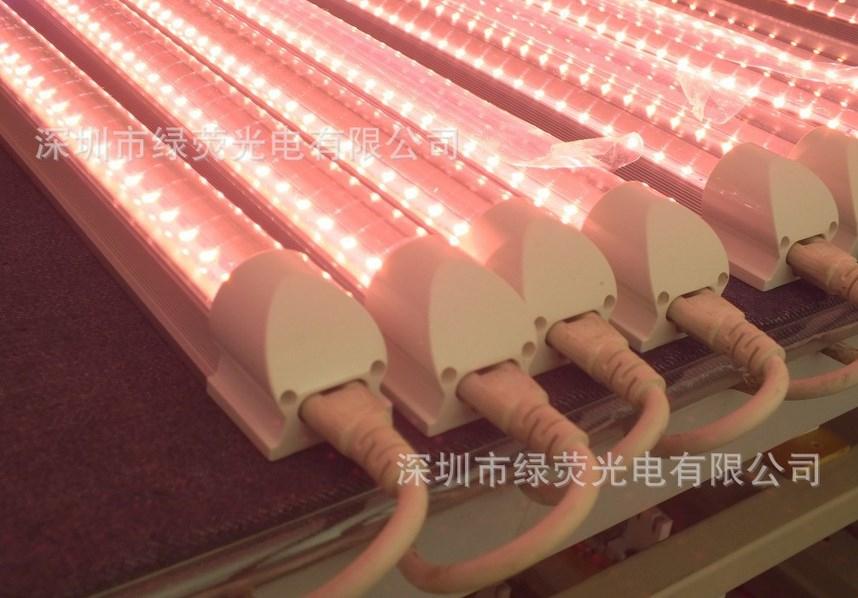 Светодиодная лампа для роста растений LED Lvyingguangdian T5-Т8-ZWD (112-111) - 5