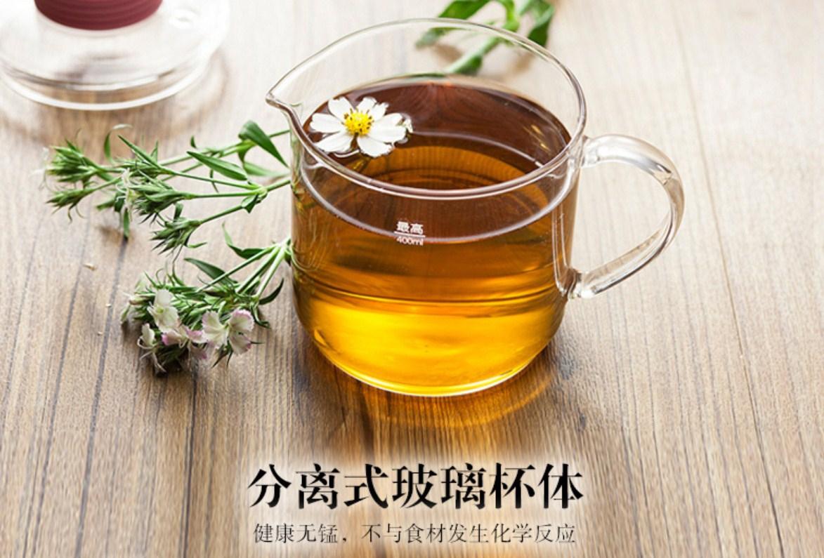 Многофункциональный электрический стеклянный чайник Bear YSH-A03U1 (119-109) - 5