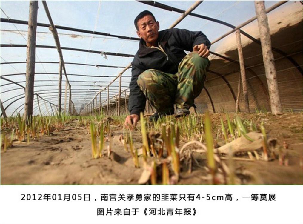 Энергосберегающая лампа для роста растений HBWJIA-E27 (112-117) - 4