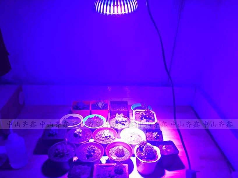 Светодиодная лампа для роста растений LED Qi Xin QX-PTXXA-12W-36W (112-113) - 11