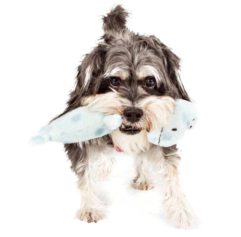 Игрушка для собак CharmingPet - POPPIN' POLKIES (128-101) - 7