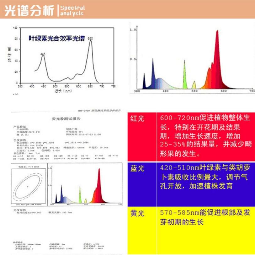 Энергосберегающая лампа для роста растений и абажур Lugal Lighting lg-szd-36-E27 (112-123) - 9