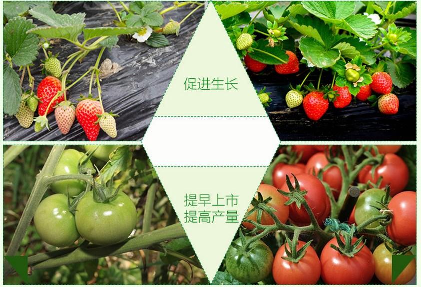 Светодиодная лампа для роста растений WEGA-WAN-P18-E27-5W-18W (112-103) - 11
