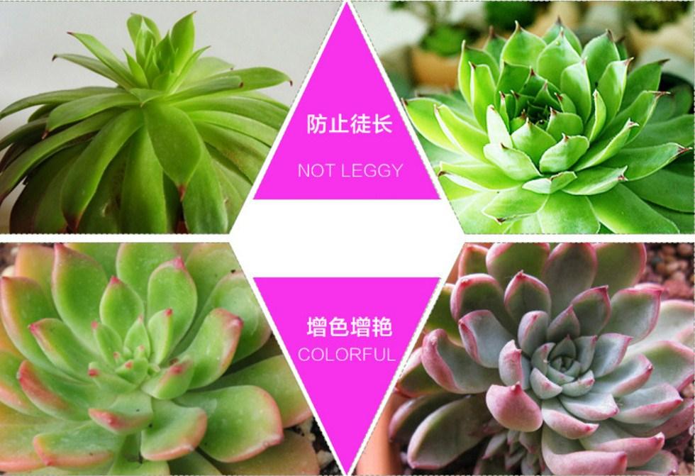 Светодиодная лампа для роста растений Billion Si Bei ZW0112-00-0 на 180-200 Вт (112-118) - 7