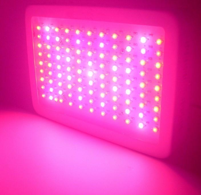 Светодиодная лампа для теплиц LED Grow Light YRS-GL-100X3W-W (112-104) - 1