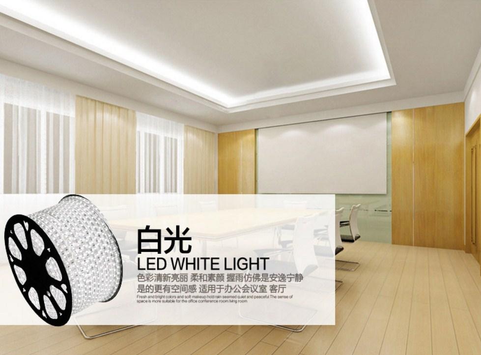Светодиодная лента Plymouth Dili Lighting LED-SMD-5050 (101-245) - 1