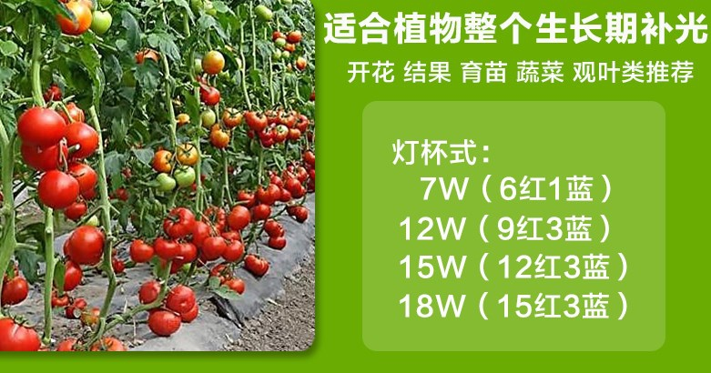 Светодиодная лампа для роста растений WEGA-WAN-P18-E27-5W-18W (112-103) - 3