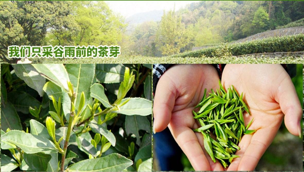 Зеленый чай 2016 года YIBEIXIANG-100g (121-105) - 7