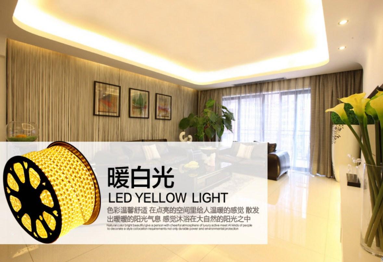 Светодиодная лента Plymouth Dili Lighting LED-SMD-5050 (101-245) - 2