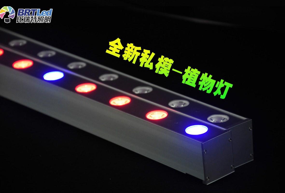 Светодиодная лампа для роста растений Birui Te 1321-40W-80W (112-121) - 2