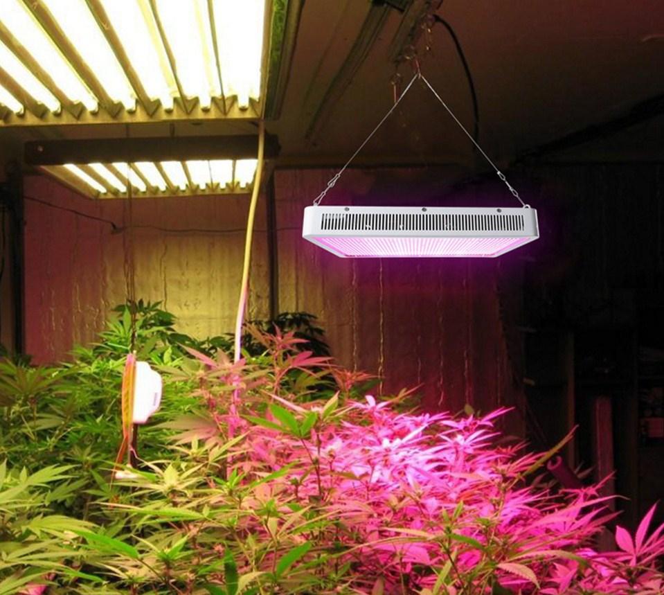 Светодиодная лампа для роста растений Billion Si Bei ZW0139-00-0 на 300 Вт (112-119) - 14