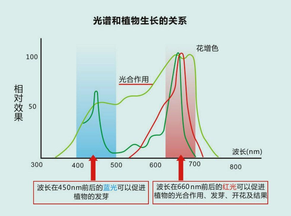 Светодиодная лампа для роста растений Birui Te 1321-40W-80W (112-121) - 11