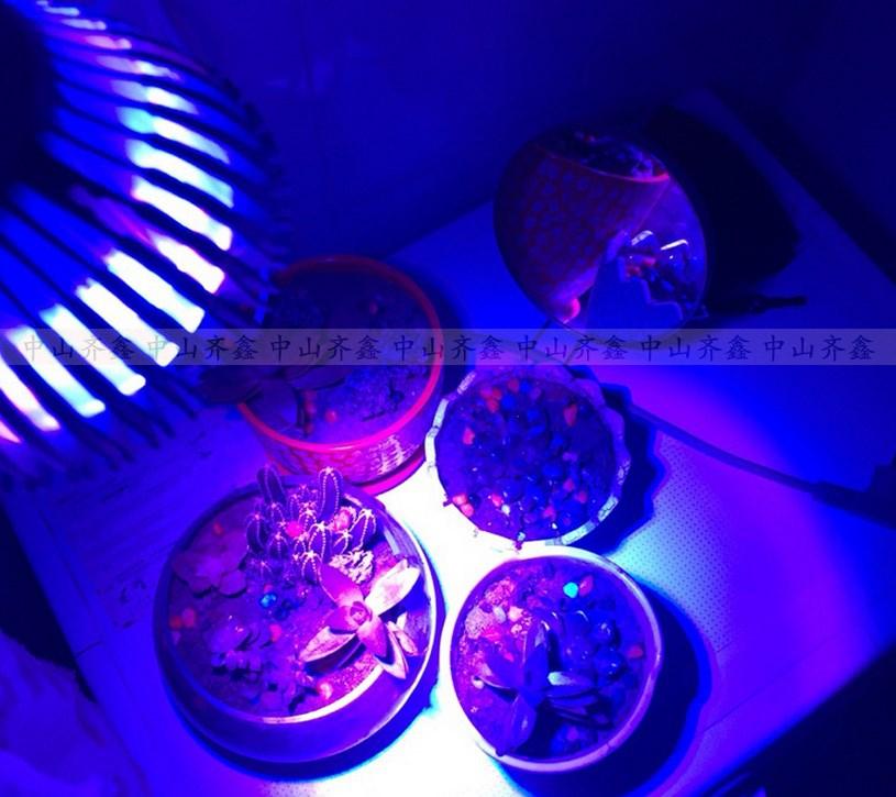 Светодиодная лампа для роста растений LED Qi Xin QX-PTXXA-12W-36W (112-113) - 9