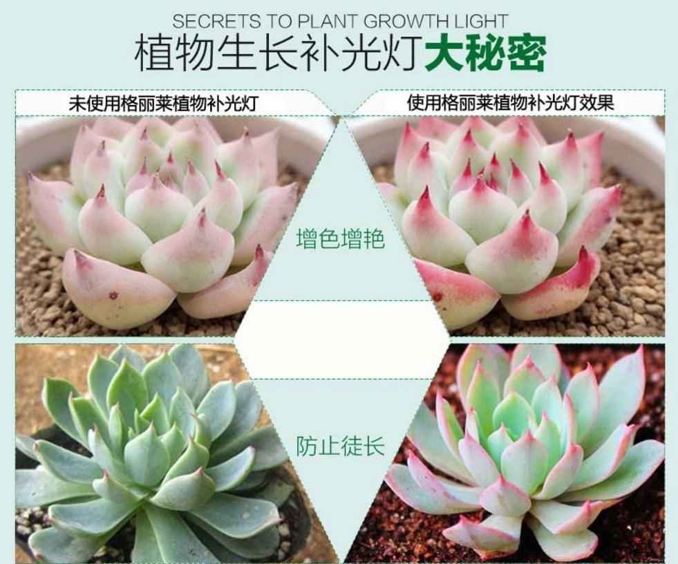 Светодиодная лампа для роста растений Birui Te 1321-40W-80W (112-121) - 8