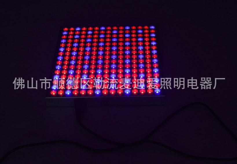 Светодиодная лампа для роста растений LED Маidiai MDA-PG-G08 (112-112) - 4