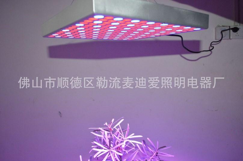 Светодиодная лампа для роста растений LED Маidiai MDA-PG-G08 (112-112) - 1