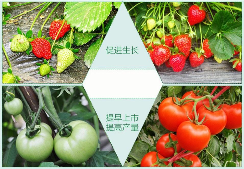 Светодиодная лампа для роста растений Birui Te 1321-40W-80W (112-121) - 9