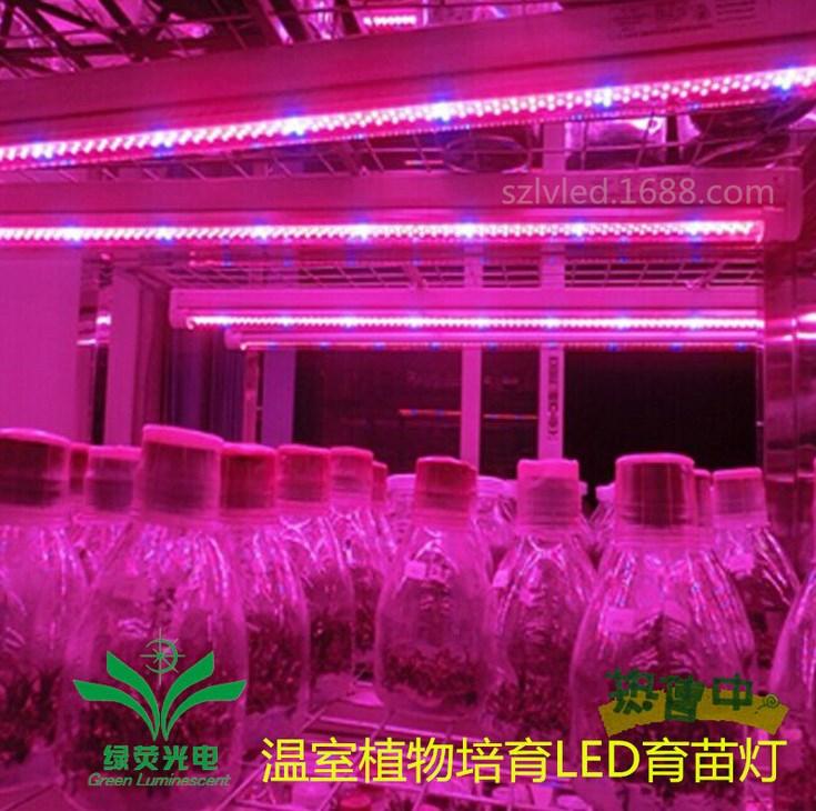 Светодиодная лампа для роста растений LED Lvyingguangdian T8-9W-23W (112-116) - 4