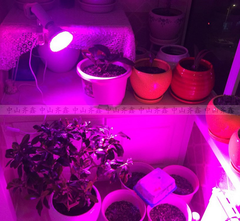 Светодиодная лампа для роста растений LED Qi Xin QX-PTXXA-12W-36W (112-113) - 10