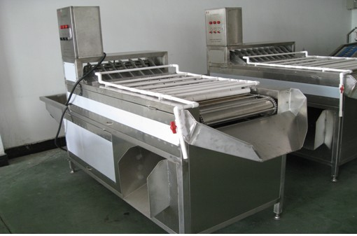Машина для очистки куриных яиц МТ-200-3 (111-126) - 1