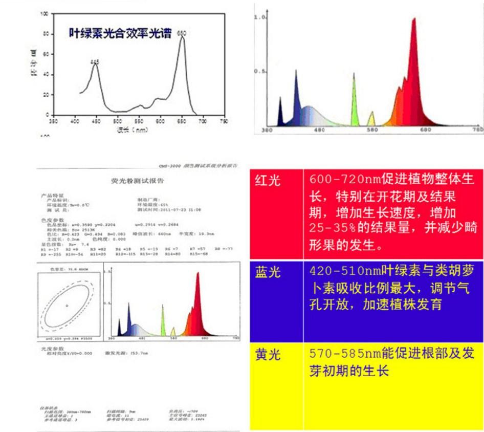 Энергосберегающая лампа для роста растений HBWJIA-E27 (112-117) - 11