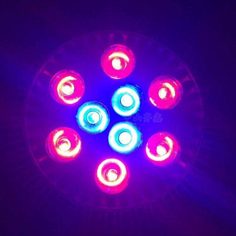 Светодиодная лампа для роста растений LED Qi Xin QX-PTXXA-12W-36W (112-113) - 2
