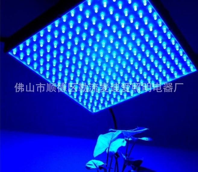 Светодиодная лампа для роста растений LED Maidiai MDA-PG-G06 (112-108) - 1