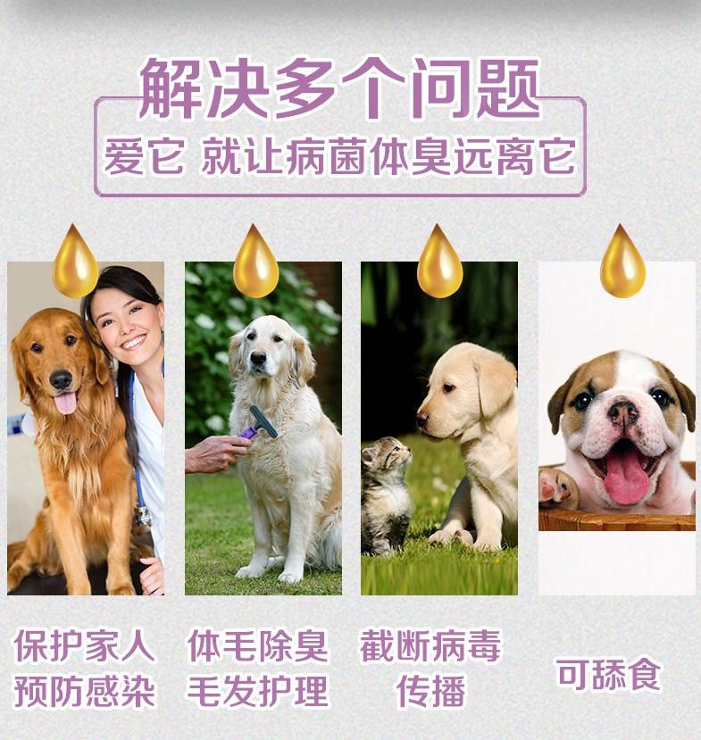 Дезинфицирующий дезодорант для домашних животных InnoPet (128-105) - 7