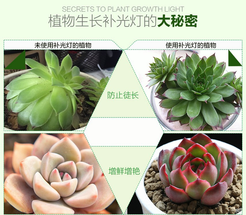 Светодиодная лампа для роста растений WEGA-WAN-P18-E27-5W-18W (112-103) - 12