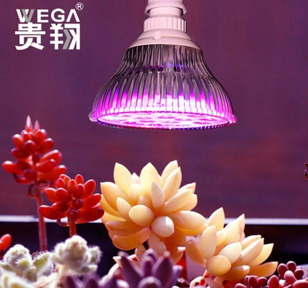Светодиодная лампа для роста растений WEGA-WAN-P18-E27-5W-18W (112-103) - 2