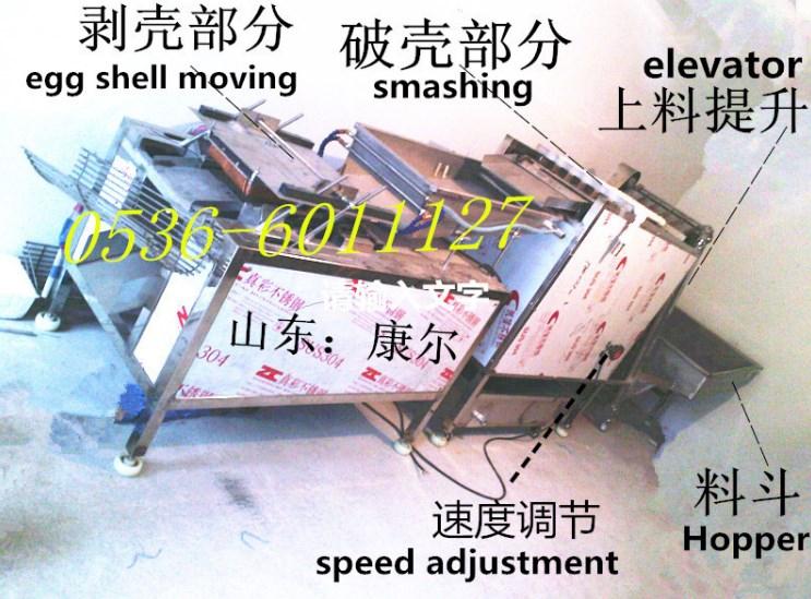 Машина для очистки куриных яиц Kanger JB-200 (5000 шт/час) (111-103) - 1