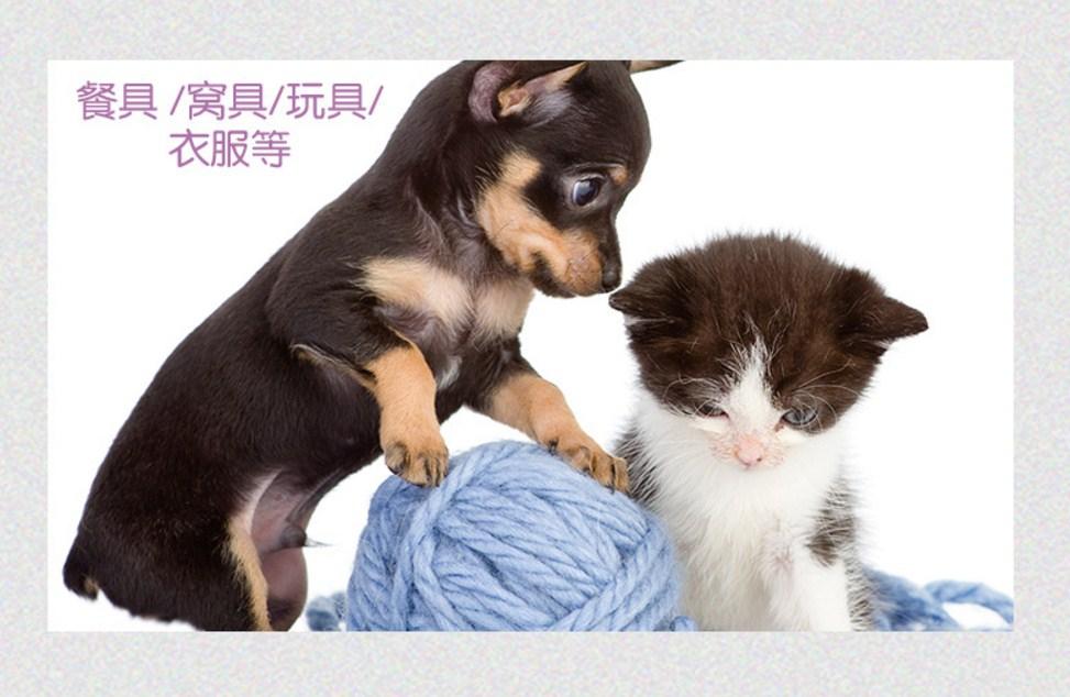Дезинфицирующий дезодорант для домашних животных InnoPet (128-105) - 12