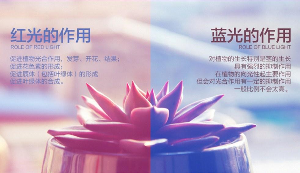 Светодиодная лампа для роста растений Billion Si Bei ZW0139-00-0 на 300 Вт (112-119) - 7