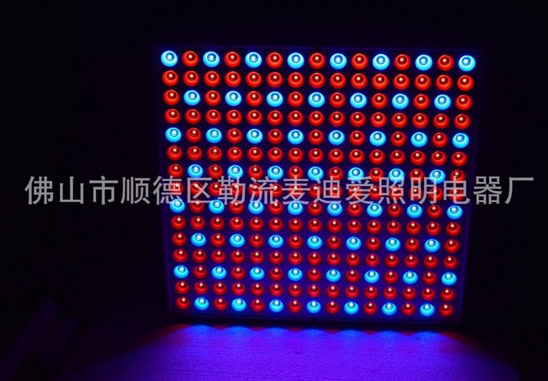 Светодиодная лампа для роста растений LED Маidiai MDA-PG-G08 (112-112) - 2