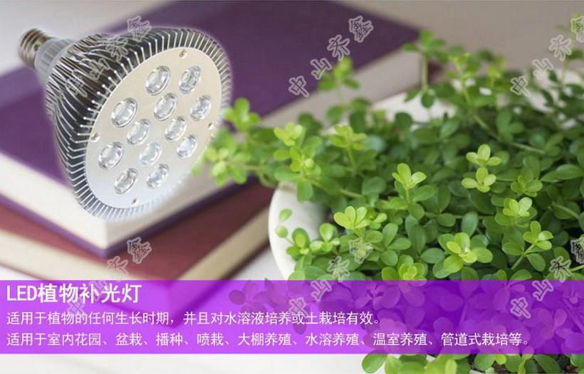 Светодиодная лампа для роста растений LED Qi Xin QX-PTXXA-12W-36W (112-113) - 4