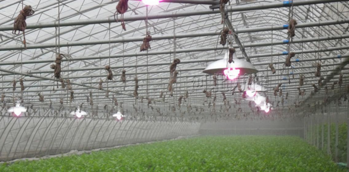 Энергосберегающая лампа для роста растений HBWJIA-E27 (112-117) - 6