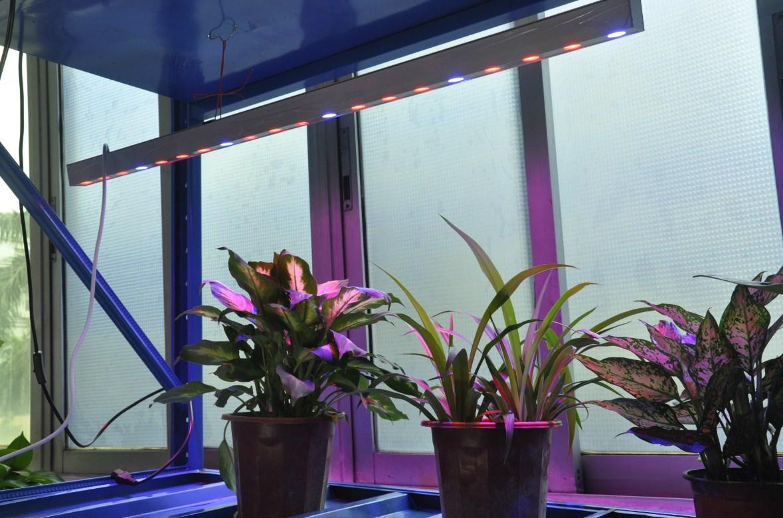 Светодиодная лампа для роста растений Birui Te 1321-40W-80W (112-121) - 7